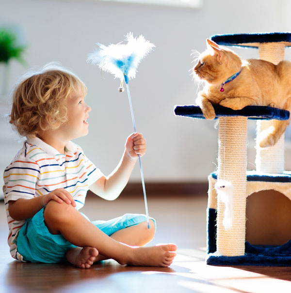 Kid playing with cat on the right