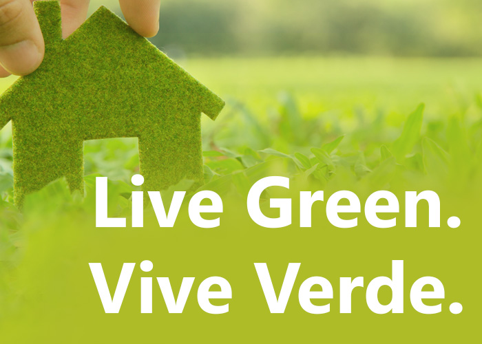 Top 10 Green Design Tips by Madison's Green Realtors