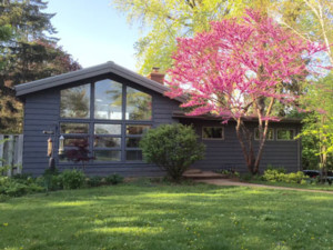 blackish house with bright pink tree in front